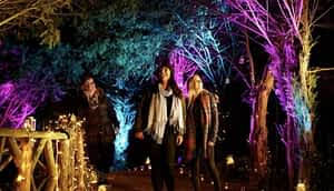 christmas party at london zoo